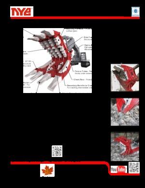 Beton-Pulverisierer Nye TRX350
