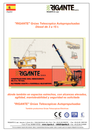 Industrie-Mobilkrane Rigante GR 100